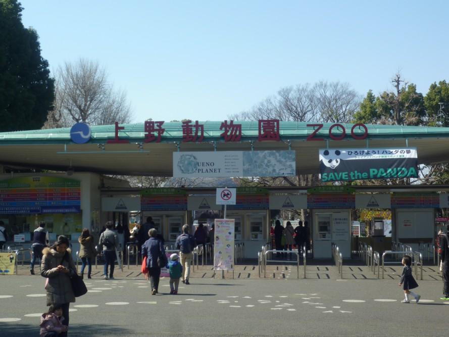 またまた動物園シリーズ( ^ω^ )